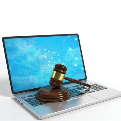 Cybercrime and Punishment: Who Is Accountable for Data Loss?
